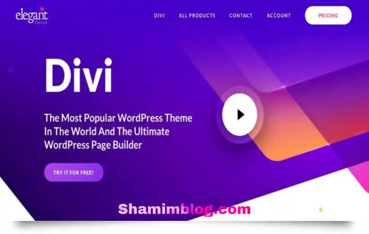 Divi theme,divi page builder
